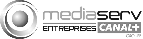 Mediaserv Entreprises